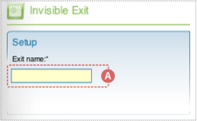 "Partila picture Flash component inspector. This is the Setup section for the DoubleClick Flash Invisible Exit component with the ""Exit name"" text field highlighted and labeled A."