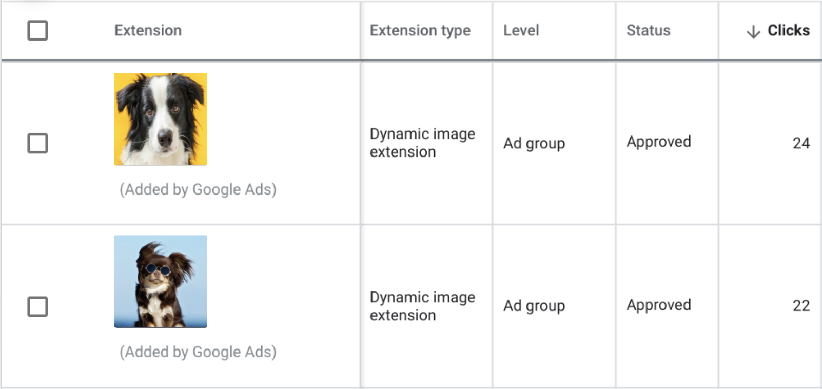 Screenshot of Google Ads UI for reviewing dynamic image extensions