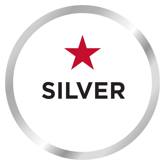 Media Guide BrSilveronze badge