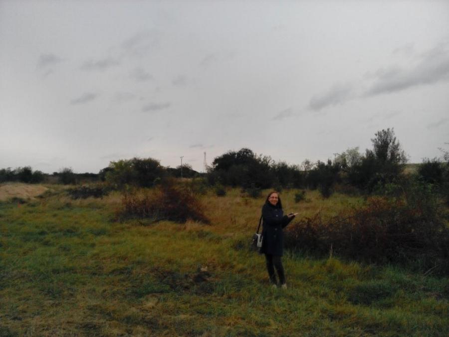 Hledání a koupě pozemku