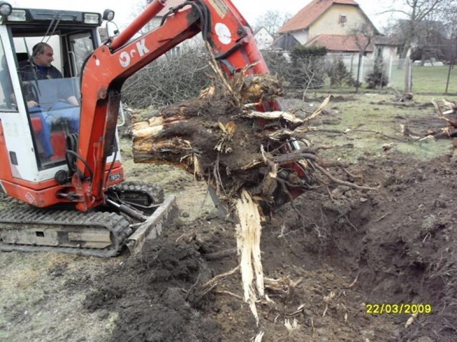 Vyváženi stavební sutě z demolice a kopáni pařezů