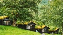 Slyšeli jste někdy o tzv. Zelené střeše?
