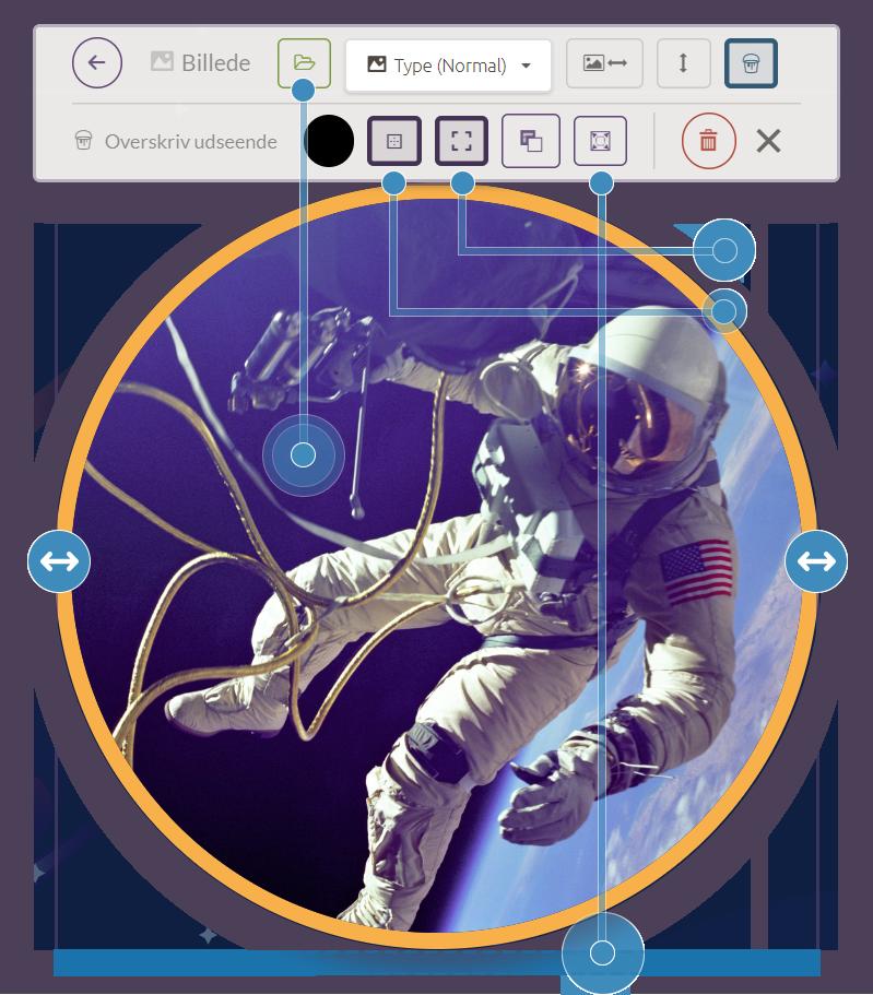 image-options-diagram-transparent