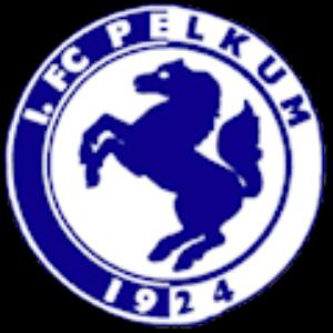 1. FC Pelkum