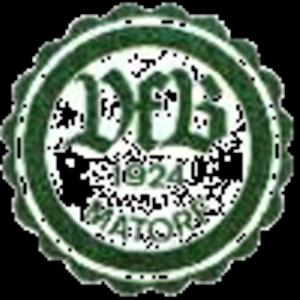 VfB Matorf
