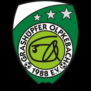 Grashüpfer Olpkebach