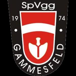 Spvgg Gammesfeld