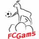 FC Gams
