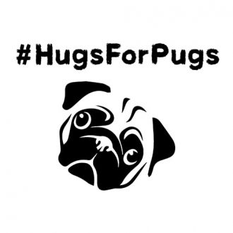 hugs for pugs hashtag womens crop top india min