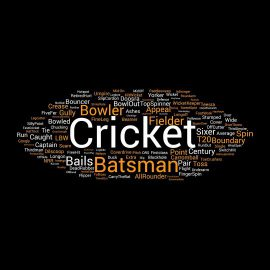 cricket terminology word cloud