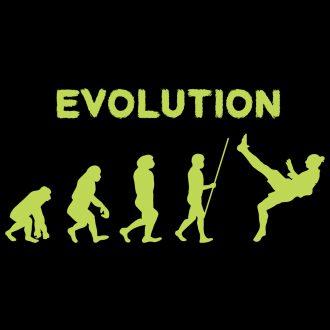 evolution of zlatan