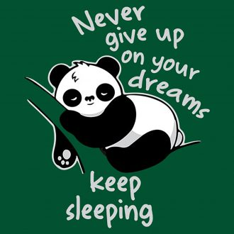 never give up dreams keep sleeping