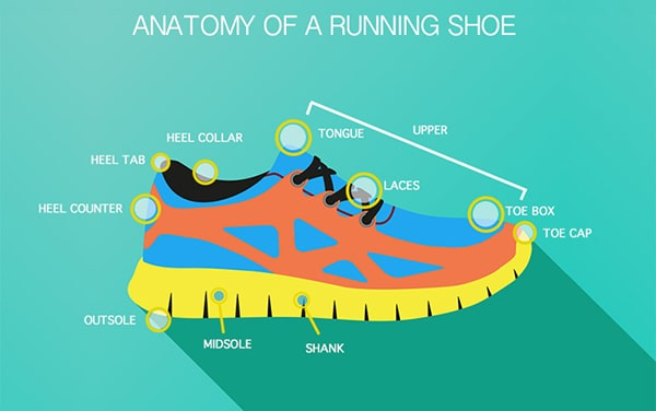 15f69f7e best running shoes india anatomy of the shoe swag swami article