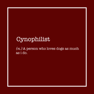 40fd2ebb cyaniphilist dog lover canine friend