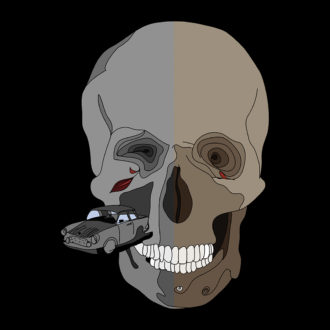 ae69d8dd the skull that sends shivers