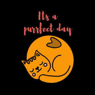 c4b61b79 its a purrfect day