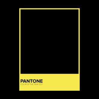 28692422 pantone color 2021 black