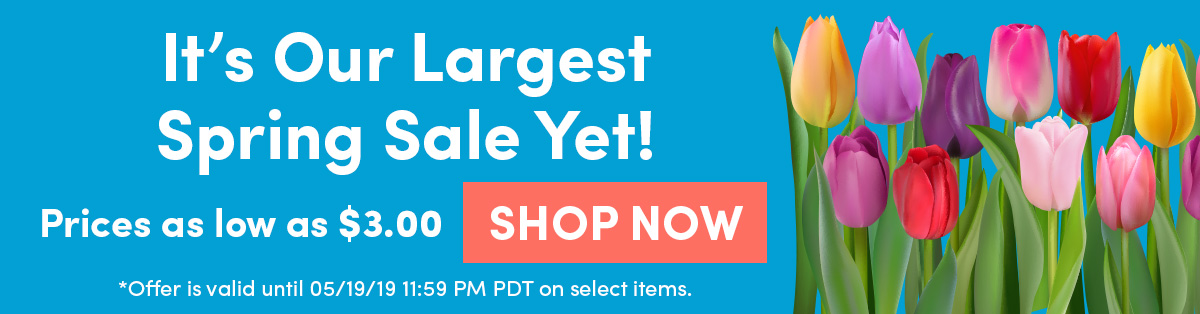 It's Our Largest Spring Sale Yet! Prices as low as $3.00 SHOP NOW