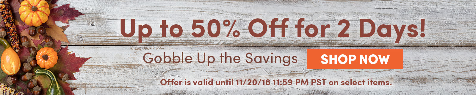 Up to 50% Off for 2 Days! Gobble Up the Savings SHOP NOW