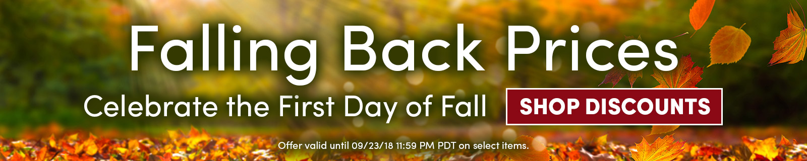 Falling Back Prices - Celebrate the First Day of Fall - SHOP DISCOUNTS