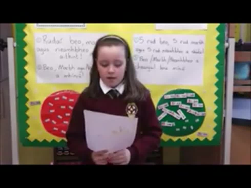 Summer Sounds Poems - Rang 5-6-7