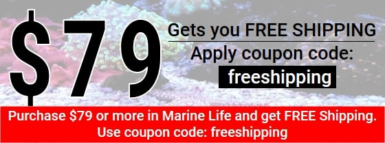 https://storage.googleapis.com/swf_promo_images/19/freeshipping-promo-2019.jpg