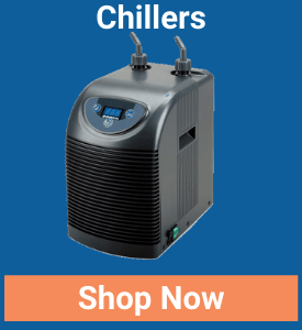 https://storage.googleapis.com/swf_promo_images/2020/chillers.png