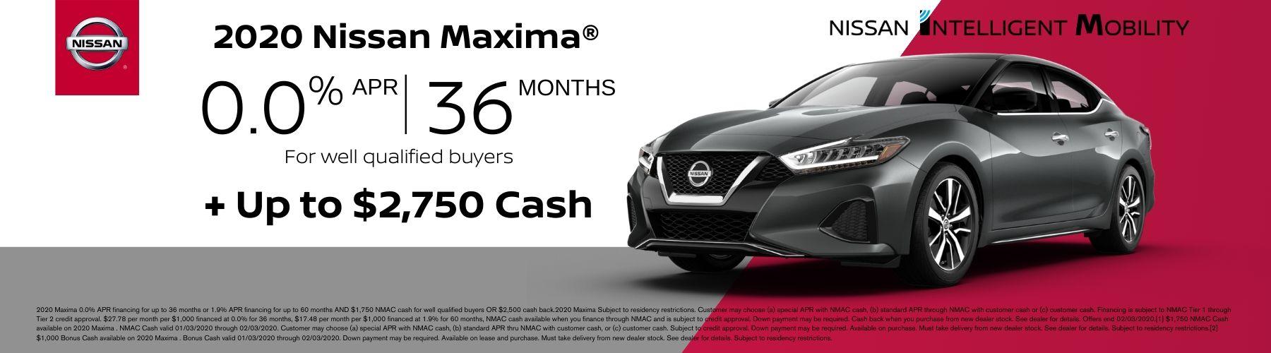 Maxima January Offer