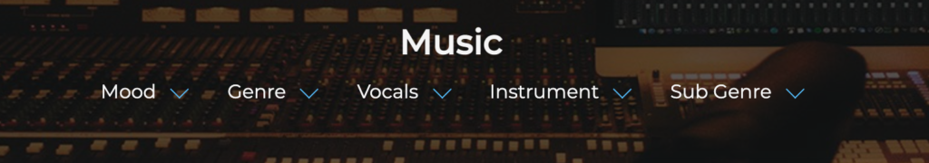 Screenshot demonstrating music search filter options on Synchedin
