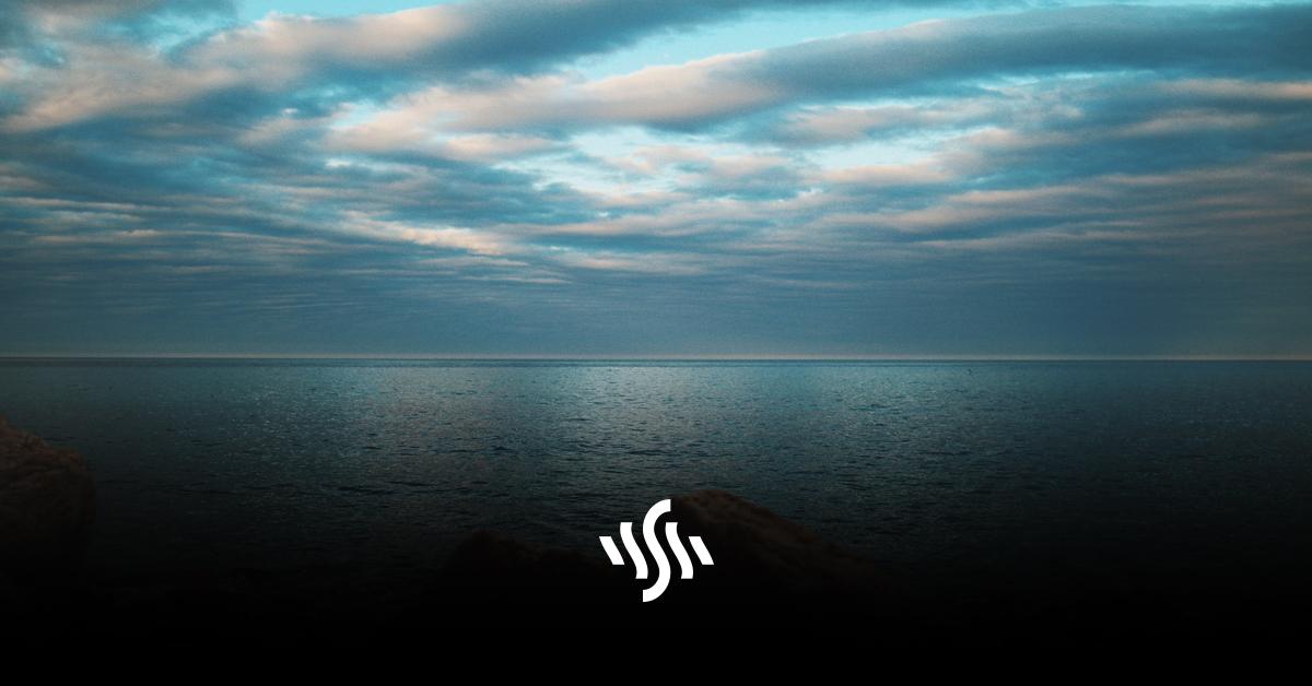 Synchedin Spotlight | Passion by Borrtex