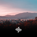 Synchedin Spotlight | Lotus by Vexento