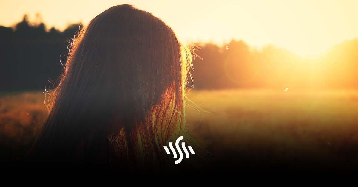 Synchedin Spotlight   sunshine by Skeptic