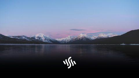 Synchedin Spotlight | Stardust by SHIKIMO