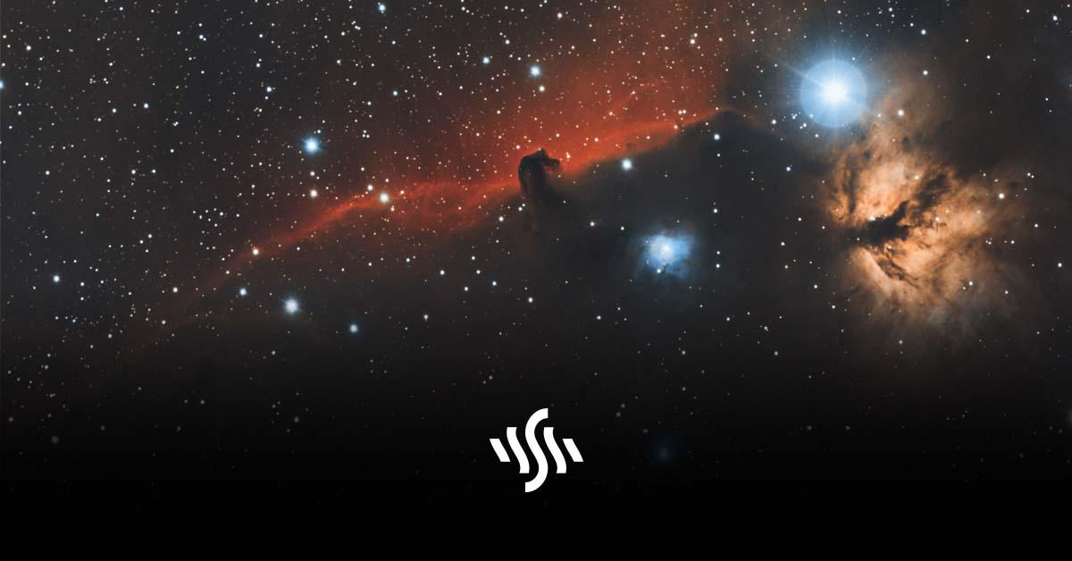Synchedin Spotlight | Transmission 13 by Wojciech Golczewski