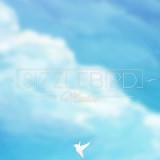 Sizzle Bird