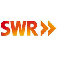 Distributionsmanager/in mit Tätigkeitsschwerpunkt Social Media Logo