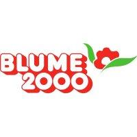 Frontend-Entwickler (m/w) in Norderstedt bei Hamburg bei BLUME 2000 new media ag