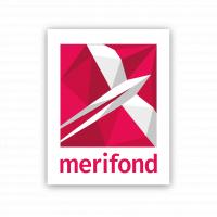 Data Analyst w/m in Braunschweig bei Merifond GmbH