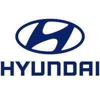 Teamleiter Customer Experience (m/w) in Offenbach bei Hyundai Motor Deutschland GmbH