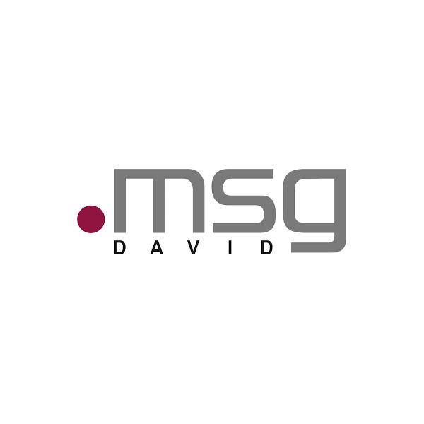 IT-Project Manager / Projektleiter Automotive (m/w/d)