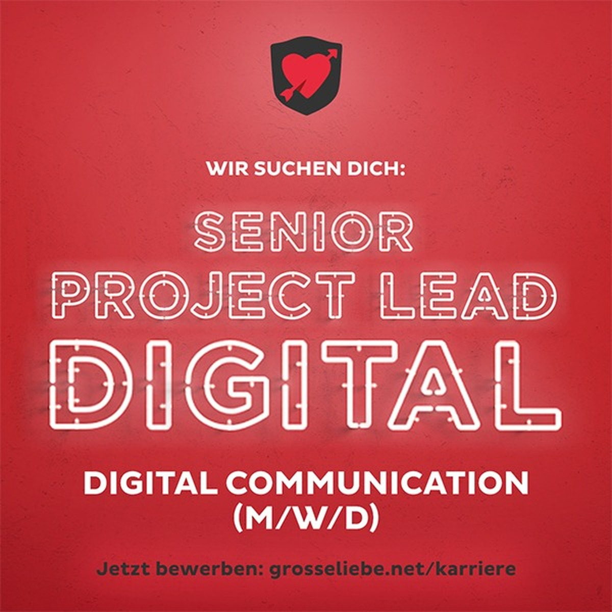 Senior Project Lead Digital (m/w/d)