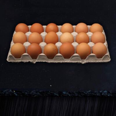 Grain Fed Eggs 18s