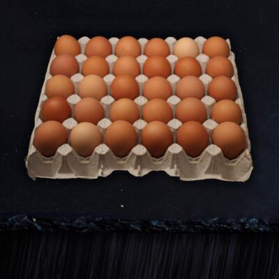 Grain Fed Eggs 30s