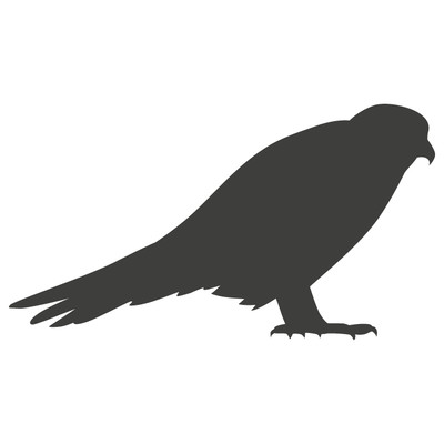 Blockbird.data Logo