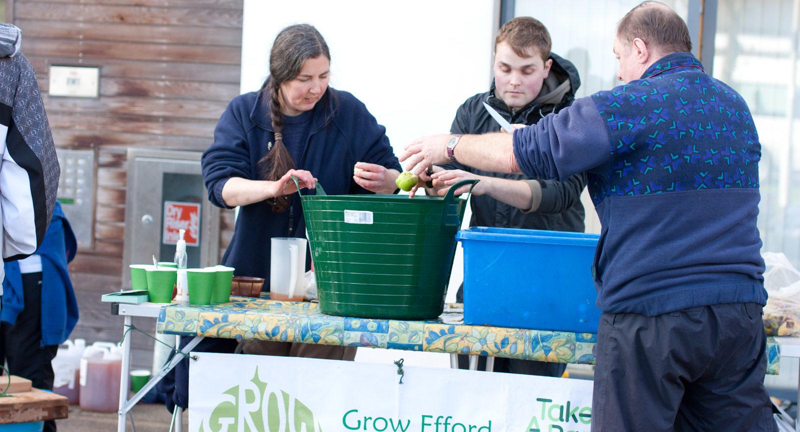 Grow Efford 19