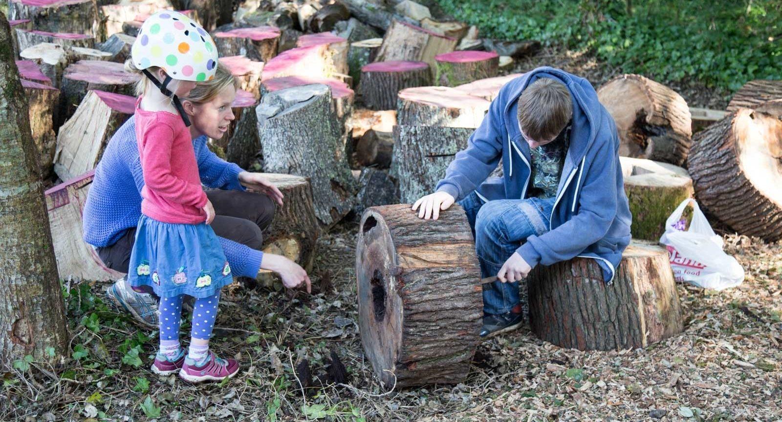 Sculpting Saltram Efford 12