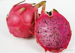 F12 : RED DRAGON FRUIT ( Malaysia ) 1 pc