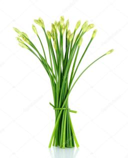 A75 : LEEK FLOWER  (LEEK BUNGA) 1 BAG