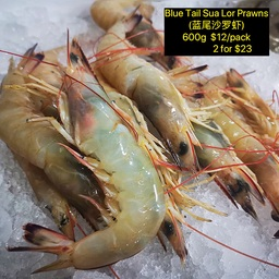 Blue tail Sua Lor Prawn (沙罗虾)