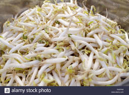A85 :  BEAN SPROUT (TAUGE )500G